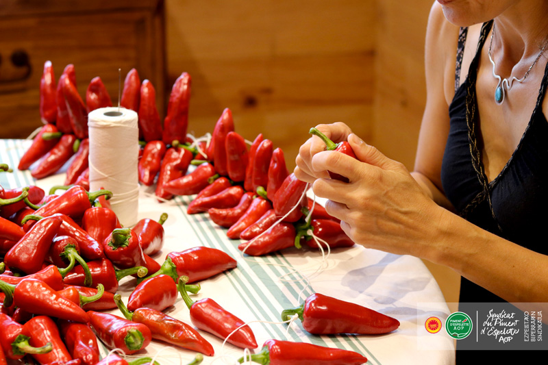 Productrice de Piments d'Espelette en train de corder des piments